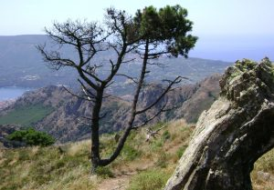 Auf dem Höhenweg nach Porto Azzurro