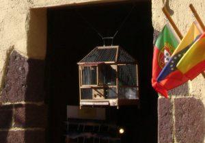 Gomera revisited