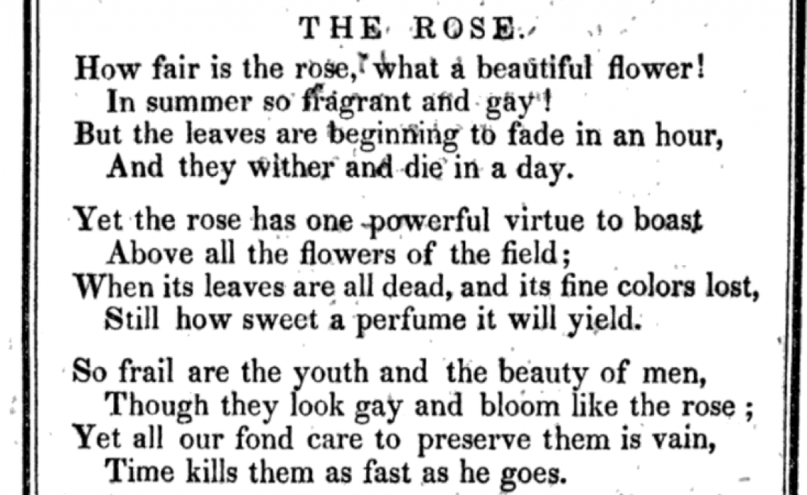 The Rose (Poem)