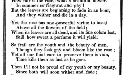 The Rose (Poem)